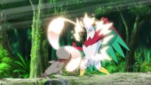 ...para golpear varias veces al Hawlucha de Ash