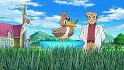 EP880 Laboratorio de Oak (Pokémon Holo Caster).png
