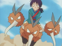 EP033 Dodrio (2).png