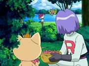 EP542 James y Meowth observando a Jessie.png
