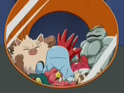 EP264 Pokémon capturados (2).png