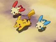 PK07 Pikachu, Plusle y Minun.jpg