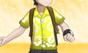 Camisa Alola Amarillo.png