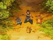 EP540 Ash, Riolu, Buizel y Pikachu en el bosque.png