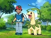 EP410 Ash se reencuentra con Bayleef.jpg