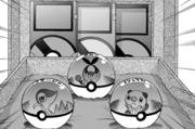 PMS462 Negro eligiendo a su Pokémon inicial.png