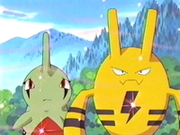 EP263 Elekid y Larvitar oliendo dulce aroma.png