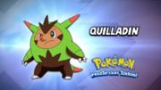 EP898 Cuál es este Pokémon.png
