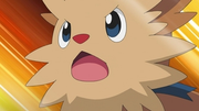 EP675 Lillipup.PNG
