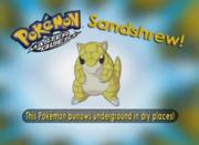 EP220 Pokémon.png