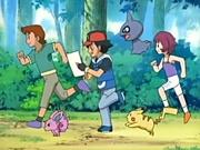 EP436 Entrenadores y sus pokémon.jpg