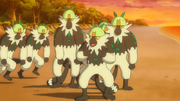 EP1007 Passimian.png