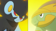 EP635 Luxray VS Grotle.png