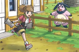 Primera misión de Pokémon Ranger 2.png