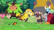 P19 Pokémon del bosque (5).png