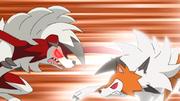 EP1048 Lycanroc vs Lycanroc.png