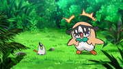 EP1055 Rowlet Hoothoot.png