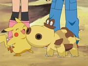 EP534 Hippopotas con Pikachu.png