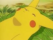EP039 Pikachu inconsciente.png