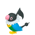 Chatot macho