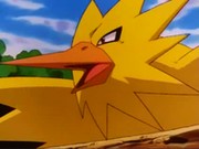 EP244 Zapdos.png