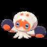 Clobbopus