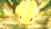 EP953 Pikachu usando Carrera arrolladora.png