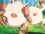 EP235 Primeape y Mankey.png