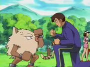 EP264 Primeape.png