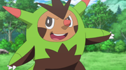 EP898 Quilladin (2).png