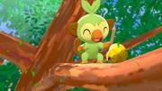 Grookey situado en una rama de árbol EpEc.jpg