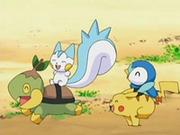 EP534 Turtwig, Pachirisu, Piplup y Pikachu jugando.png