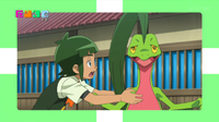 EP922 Grovyle.png