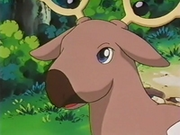 EP127 Stantler (4).png