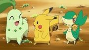 PK17 Chikorita, Pikachu y Snivy.jpg