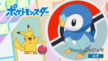 Piplup.