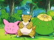 EP235 Pokémon del bosque.png