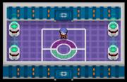 Liga Pokémon (Sinnoh) Sala Delos DP.png