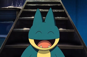 P08 Munchlax de May.png