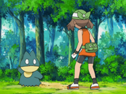 EP545 Munchlax y May-Aura.png