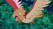 EP609 Spearow (3).png
