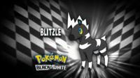 """Blitzle en el segmento """"¿Quién es ese Pokémon?/¿Cuál es este Pokémon?"""""""