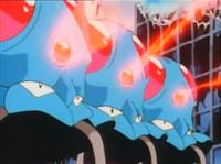 Tentacool salvajes usando rayo aurora.