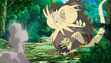 Mimikyu se acerca al Raticate de Alola dominante...