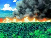 EP540 Bosque en llamas.png