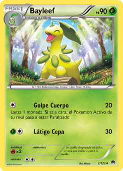 Carta de Bayleef