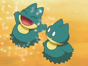 EP545 Munchlax (2).png
