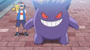 Viajes Pokémon Temporaa 23