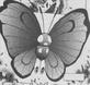 Butterfree en ETP02