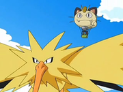 EP563 Zapdos.png